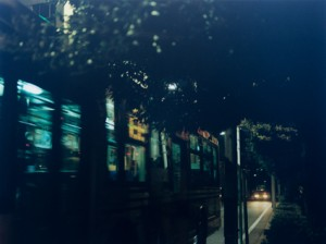 「バスと魚」 2013 ©kazue kawase